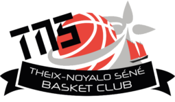 logo du site Theix Noyalo Séné Basket Club